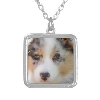 Australian shepherd puppy silver plated necklace