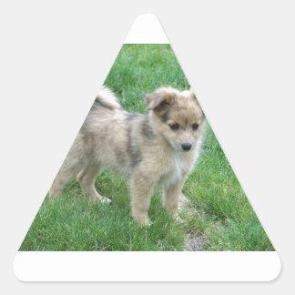 Australian Shepherd Puppy Triangle Sticker