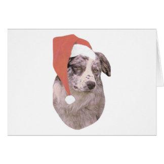Australian Shepherd Santa Hat Greeting Card