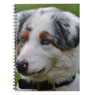 Australian Shepherd Spiral Notebook