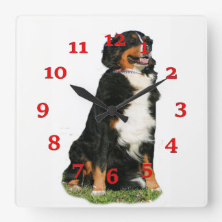 Australian Shepherd Square Wall Clock