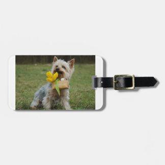 Australian Silky Terrier Dog Luggage Tag