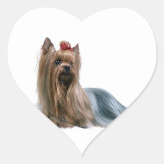 Australian Silky Terrier Dog Show Dog Heart Sticker