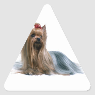 Australian Silky Terrier Dog Show Dog Triangle Sticker