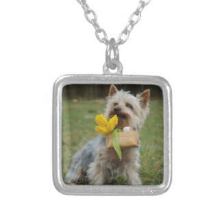 Australian Silky Terrier Dog Silver Plated Necklace
