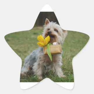 Australian Silky Terrier Dog Star Sticker