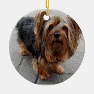 Australian Silky Terrier Puppy Dog Ceramic Ornament
