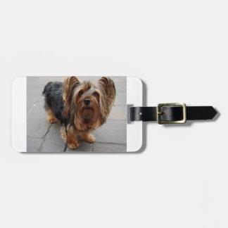 Australian Silky Terrier Puppy Dog Luggage Tag