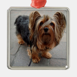 Australian Silky Terrier Puppy Dog Metal Ornament
