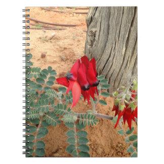 Australian Sturt's Desert Pea notebook