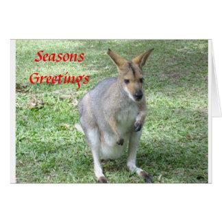 Australian themed  Christmas & Holiday cards
