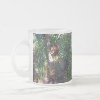 Australian Tree Kangaroo, Frosted Glass Coffee Mug