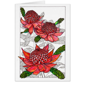 Australian Waratahs Floral Design Card