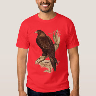 Australian Wedge Tailed Eagle. Huge Bird of Prey. T Shirts