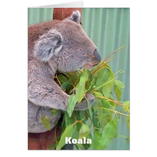 Australian Wildlife Card