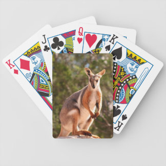 Australian yellow-footed rock wallaby bicycle playing cards