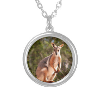 Australian yellow-footed rock wallaby silver plated necklace