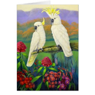 Australiana 1 cockatoos card