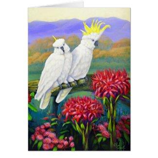 Australiana 3 cockatoos gymea lily card