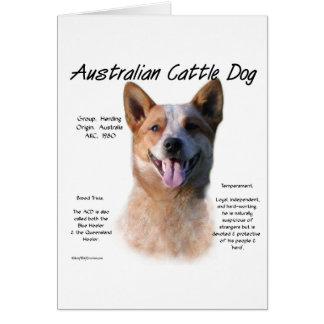 AustralianCattle Dog (redspec) History Design Greeting Card