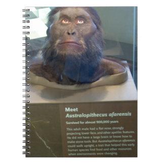 Australopithecus afarensis; museum exhibit. notebook