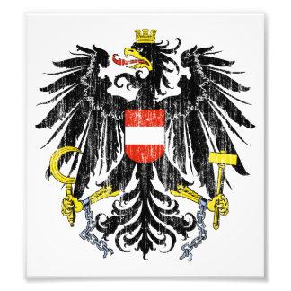Austria Coat Of Arms Photograph