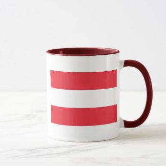 austria mug