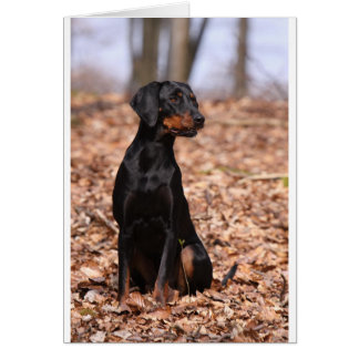Austrian Black and Tan Hound Puppy Card