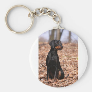 Austrian Black and Tan Hound Puppy Key Ring
