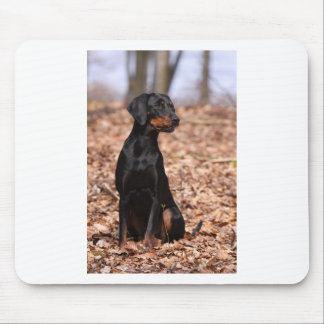 Austrian Black and Tan Hound Puppy Mouse Pad