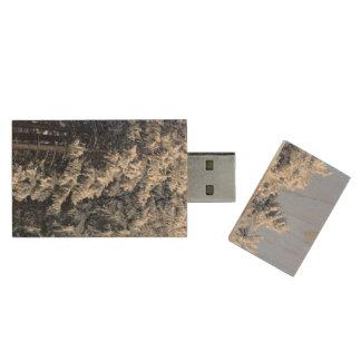 Austrian Winter Landscape Wood USB 2.0 Flash Drive