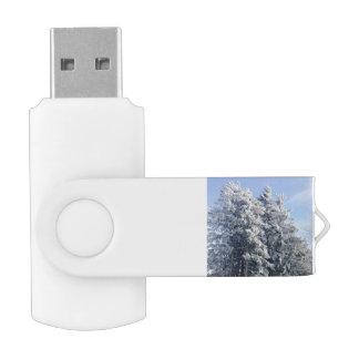 Austrian Winter Landscape Swivel USB 2.0 Flash Drive