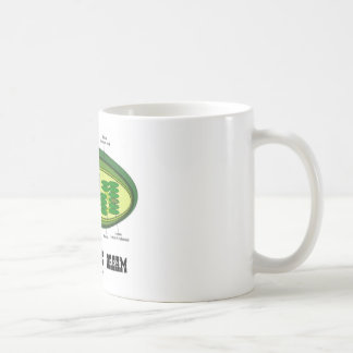 Autotrophic Dream (Biology Humor Food For Thought) Mugs