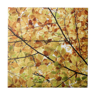 AUTUM LEAVES WALLPAPER SMALL SQUARE TILE