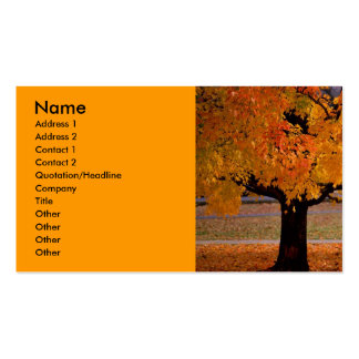 autumn (1), Name, Address 1, Address 2, Contact... Business Card Template