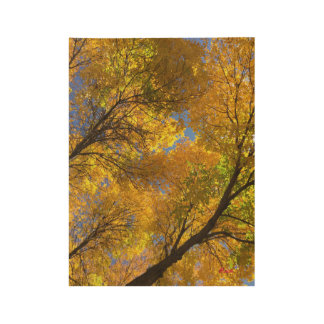 Autumn 2016 - painting wood poster