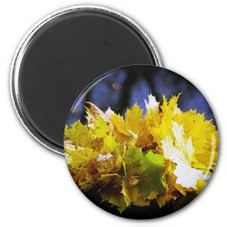 Autumn 6 Cm Round Magnet
