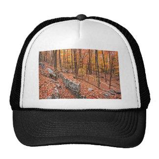 Autumn Above the Trail Cap