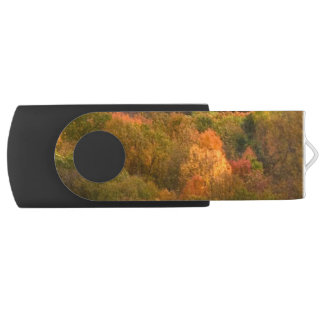 Autumn Abstract Swivel USB 2.0 Flash Drive