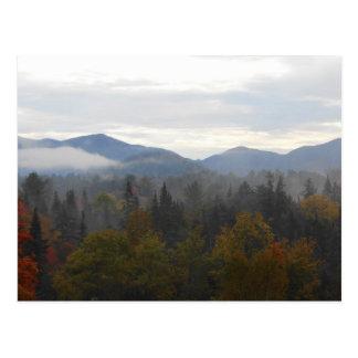 Autumn Adirondacks Trees Scene Landscape Postcard
