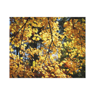 Autumn Afternoon Canvas Print