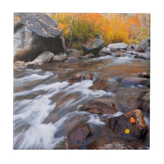 Autumn along Bishop Creek, CA Tile