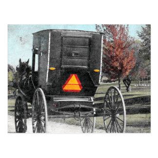 Autumn Amish Buggy Postcard
