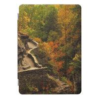 Autumn at Treman  State Park 10.5 iPad Pro Case