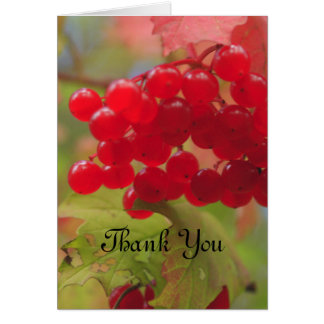 Autumn Berries Card