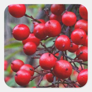Autumn Berries Square Sticker