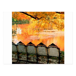 Autumn Best Seat In House Louisville Kentucky Postcard