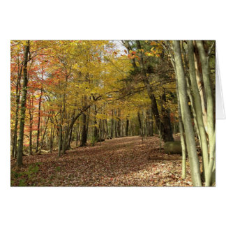 Autumn Blessings Harvest Greeting Card