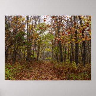 Autumn Bliss Poster