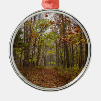 Autumn Bliss Silver-Colored Round Decoration